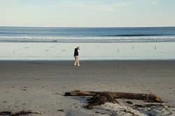 walker on beach