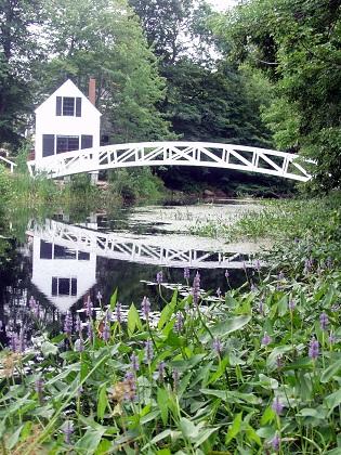 white curved bridge