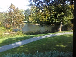 autumn trees at lake