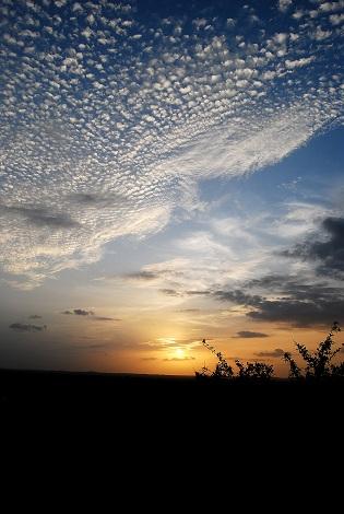 blue, white and peach sky sunset
